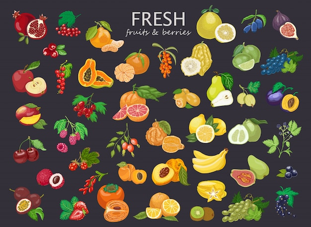 Grande conjunto de frutas e bagas coloridas.