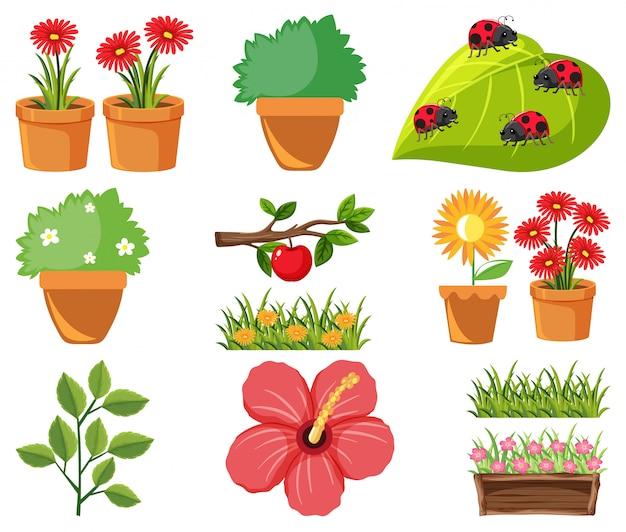 Grande conjunto de natureza com flores e folhas