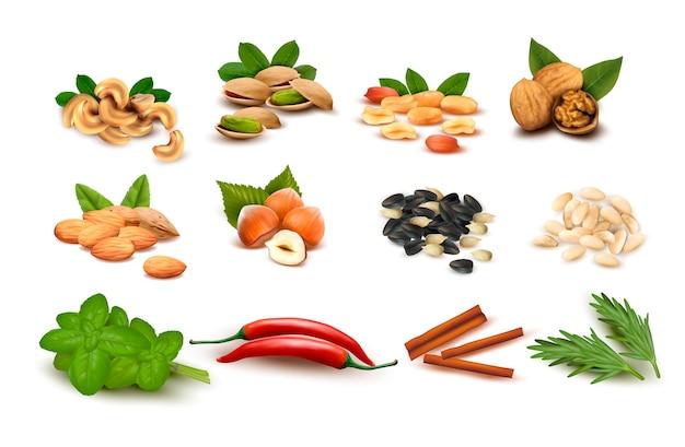 Grande conjunto de nozes maduras, sementes e especiarias