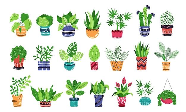 Grande conjunto de plantas em vasos de casa ou flores