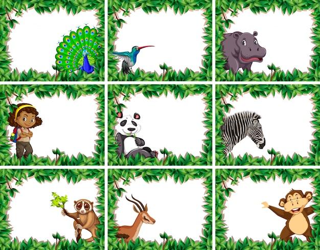 Grande conjunto de quadros de natureza animal e pessoas