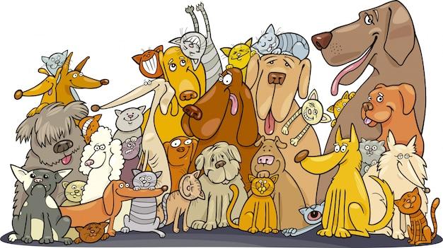Grande grupo de gatos e cães