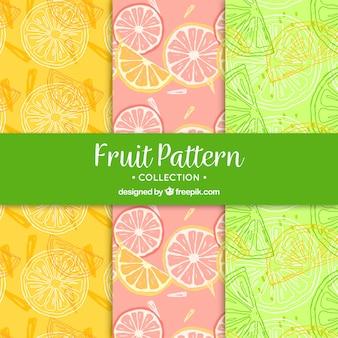 Grandes, padrões, fruta, fatias, desenhado mão, estilo