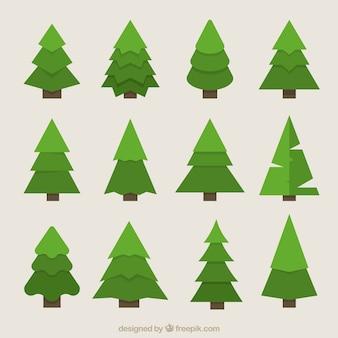 Grandes pinheiros geométricas em tons verdes