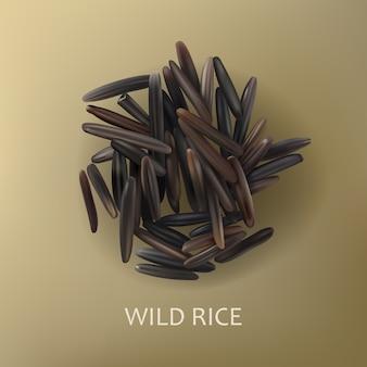 Grãos de arroz preto selvagem