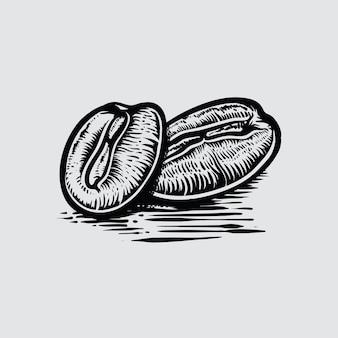 Grãos de café em ilustração em vetor desenhados à mão estilo gráfico.