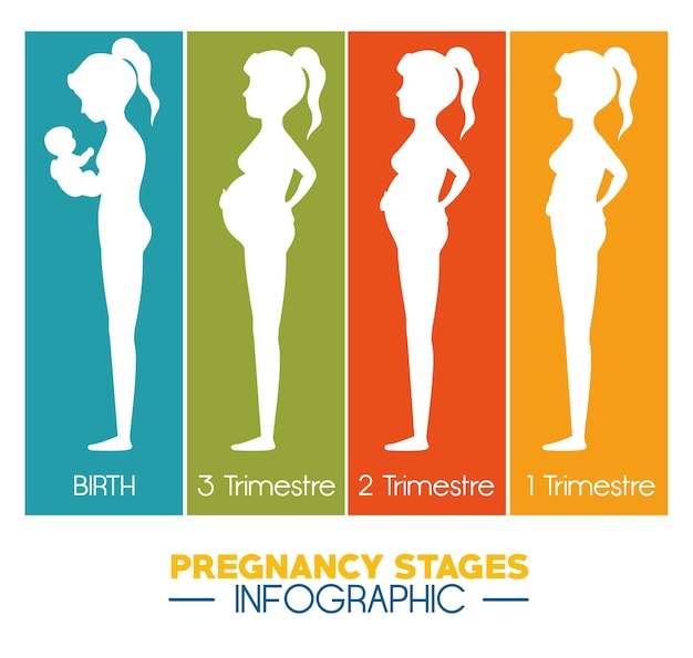 Gravidez e maternidade infográficas