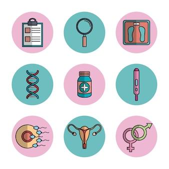 Gravidez maternidade equipamentos médicos cuidados de saúde