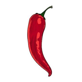 Gravura de cor vermelha picante