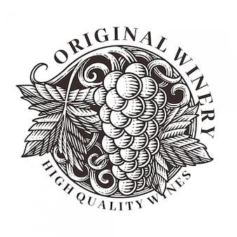 Gravura de vetor ilustração ornamento de uvas