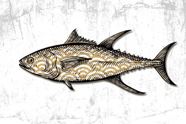 Gravura desenhada de mão de frutos do mar de atum