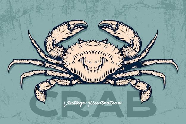 Gravura desenhada de mão de frutos do mar de caranguejo