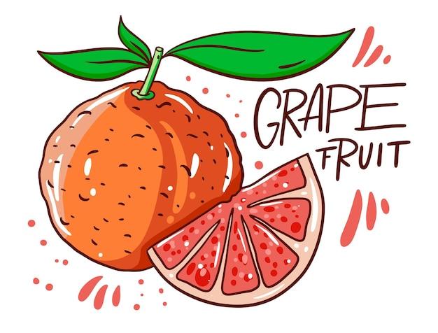 Greapefruit inteiro e em fatias. produto natural. tipografia escandinava. estilo de desenho animado.