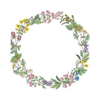 Grinalda de ervas e flores de mão desenhada