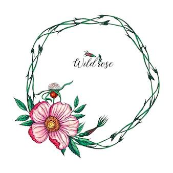 Grinalda de flor redonda de vetor com flores e folhas rosas selvagens