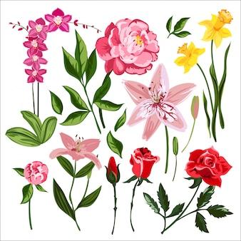 Grinalda de flores da natureza