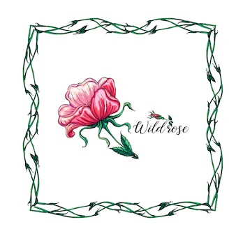 Grinalda de flores de vetor com flores e folhas rosas selvagens