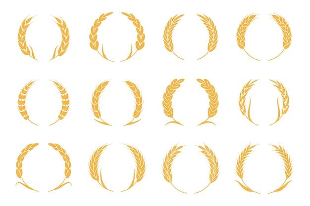 Grinaldas de trigo e centeio. logotipo do pico de colheita. elementos de ouro para logotipo de alimentos orgânicos, embalagem de pão ou rótulo de cerveja. conjunto de ícones de silhueta de vetor isolado