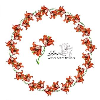 Grinaldas florais dos botões de flores do lírio. lírio laranja.