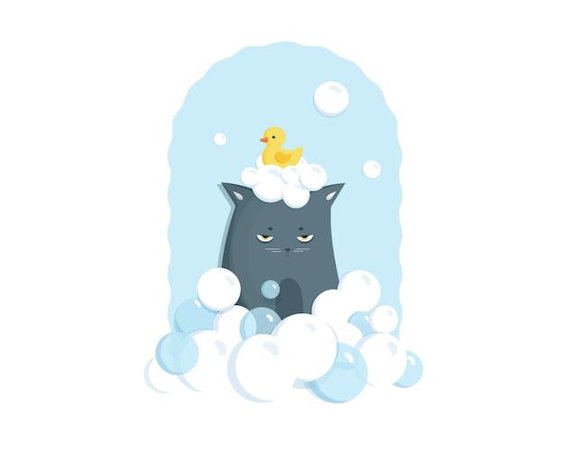 Grumpy cinza tomando banho com bolhas de sabão