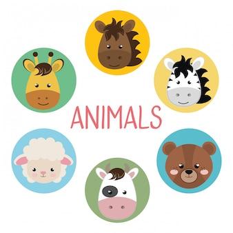 Grupo bonito cabeça animais personagens