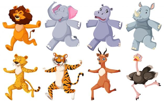 Grupo de animais correndo