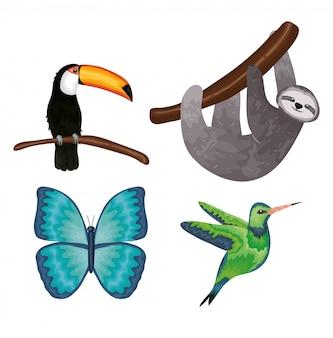Grupo de animais exóticos e tropicais