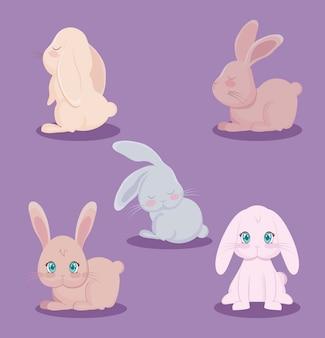 Grupo de animais fofos coelhos