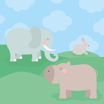 Grupo de animais herbívoros