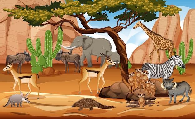 Grupo de animais selvagens africanos na cena da floresta