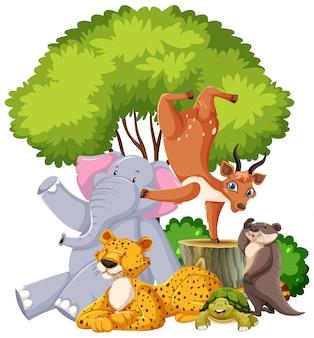 Grupo de animais selvagens isolado