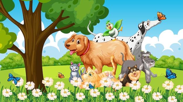 Grupo de animal de estimação na cena do parque