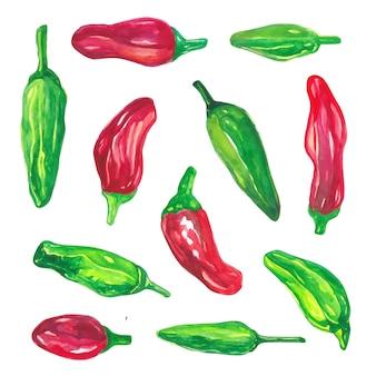 Grupo de coleção de legumes em aquarela pimentão vermelho e verde em aquarela