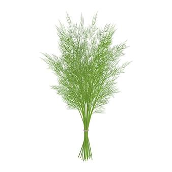 Grupo de endro verde sobre fundo branco. objeto isolado em um fundo branco. estilo dos desenhos animados. objeto para embalagens, anúncios, menu. ilustração.