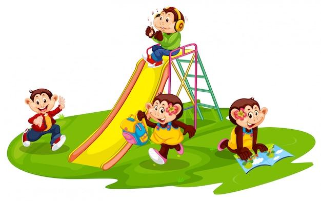 Grupo de estudante de macaco