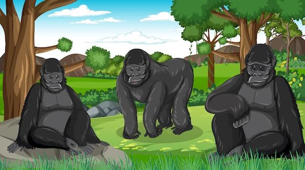 Grupo de gorilas em floresta ou cenário de floresta tropical com muitas árvores