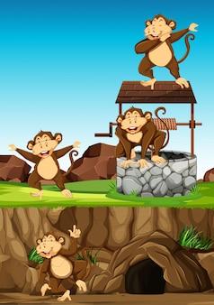 Grupo de macacos selvagens em muitas poses em estilo cartoon de parque animal no fundo do dia