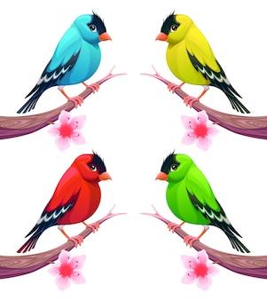 Grupo de pássaros em diferentes tons de cor vector cartoon isolado personagens