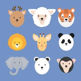 Grupo de personagens fofinhos de animais