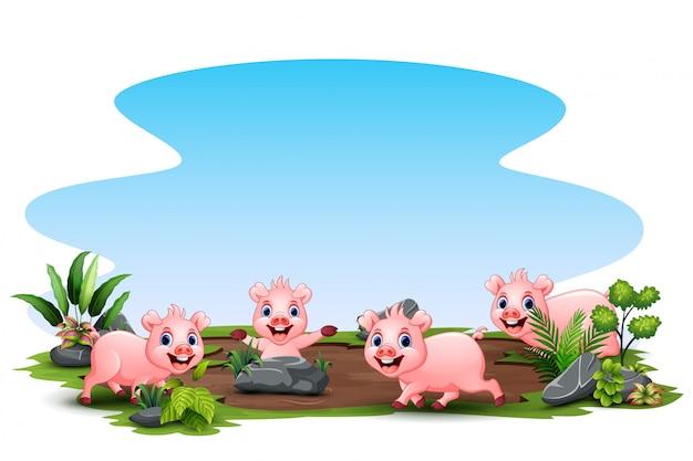 Grupo de porco jogando no campo