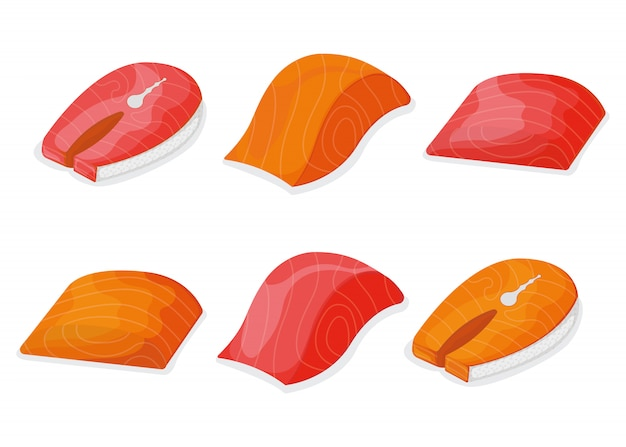 Grupo de salmões de atum dos peixes da parte, lombo de bife peixinho fresco isolado no branco, ilustração dos desenhos animados. ícone de coisas saudáveis frutos do mar gordo, mega 3 alimentos.