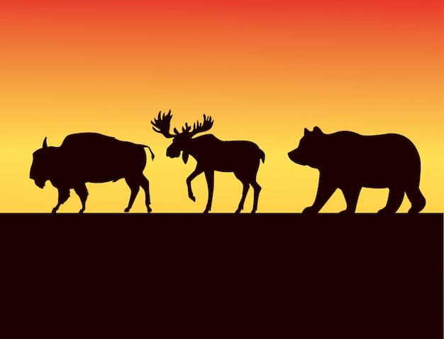 Grupo de silhuetas de animais selvagens na paisagem do pôr do sol