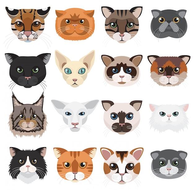 Grupo do vetor dos emoticons dos ícones das cabeças dos gatos.