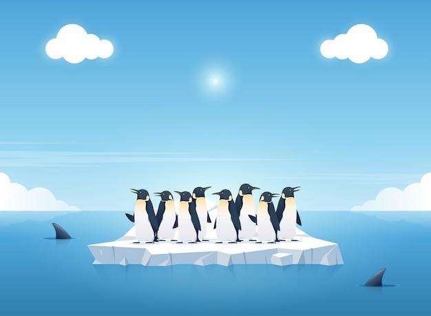Grupo dos pinguins em um pedaço de iceberg