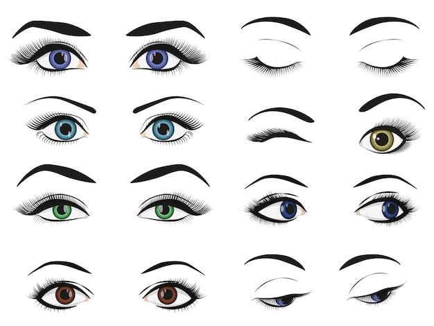 Grupo fêmea da coleção da imagem dos olhos e das sobrancelhas da mulher.