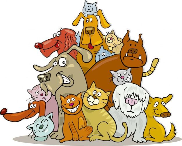 Grupo gatos e cães