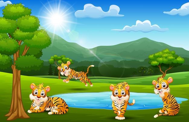 Grupo tige feliz jogando ao lado de pequeno lago com paisagens montanhosas