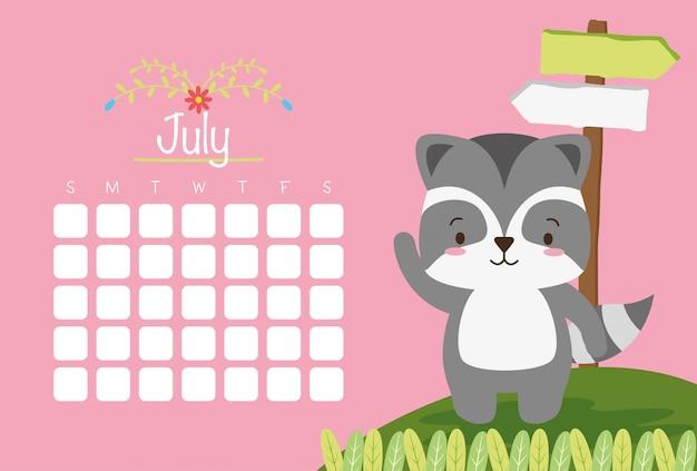 Guaxinim bonito com o mês de julho, calendário de animais