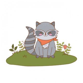 Guaxinim bonito no personagem de floresta de campo