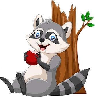 Guaxinim dos desenhos animados, comendo uma maçã vermelha